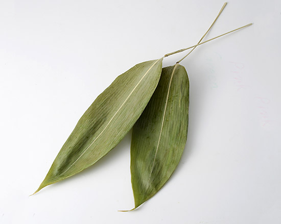 笹の葉(乾燥) / 約50枚