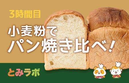 とみらぼ3時間目 いろいろな小麦粉でパンを焼き比べてみた